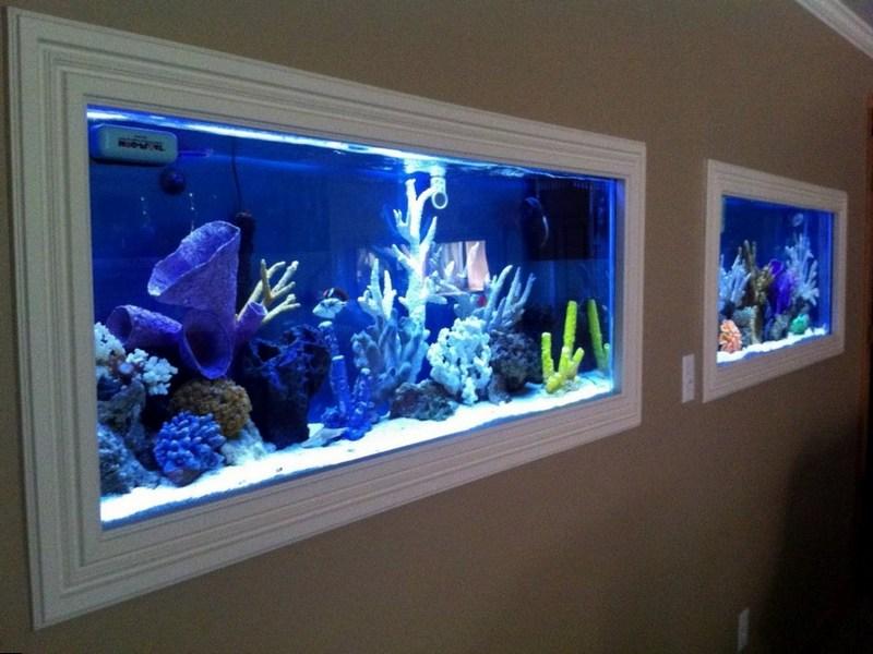 Встроенный аквариум в виде картин