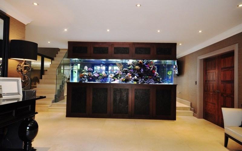 Шкаф аквариум
