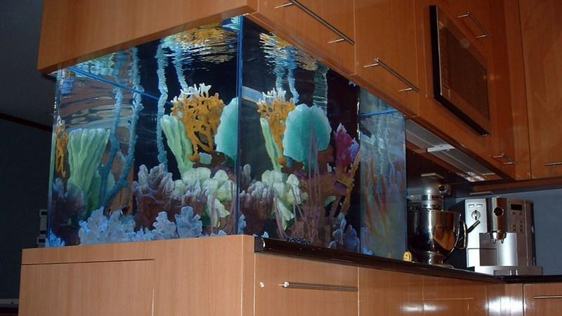 аквариум отделяет кухню и гостиную