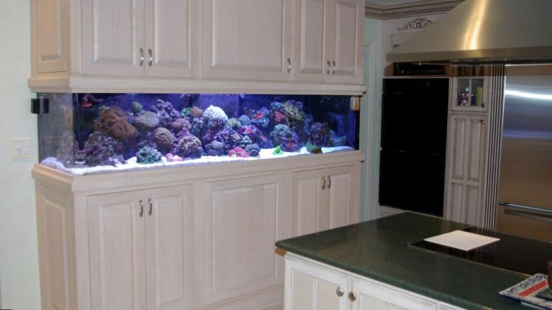 встроенный аквариум в белой кухне