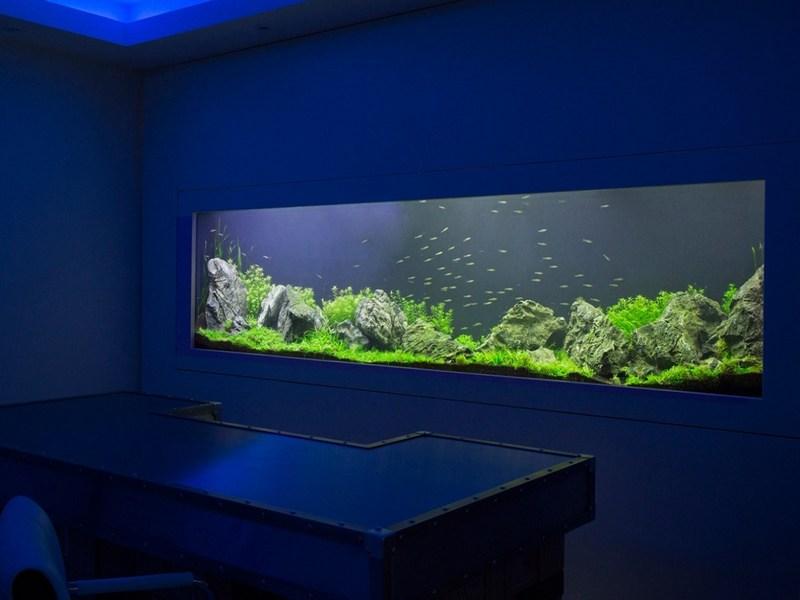 Стенновой аквариум