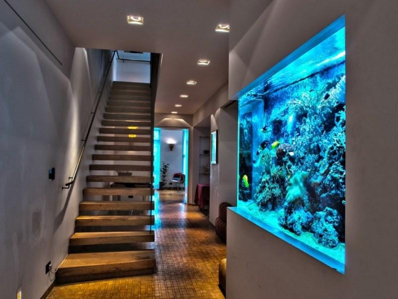 Цветные кораллы в стене
