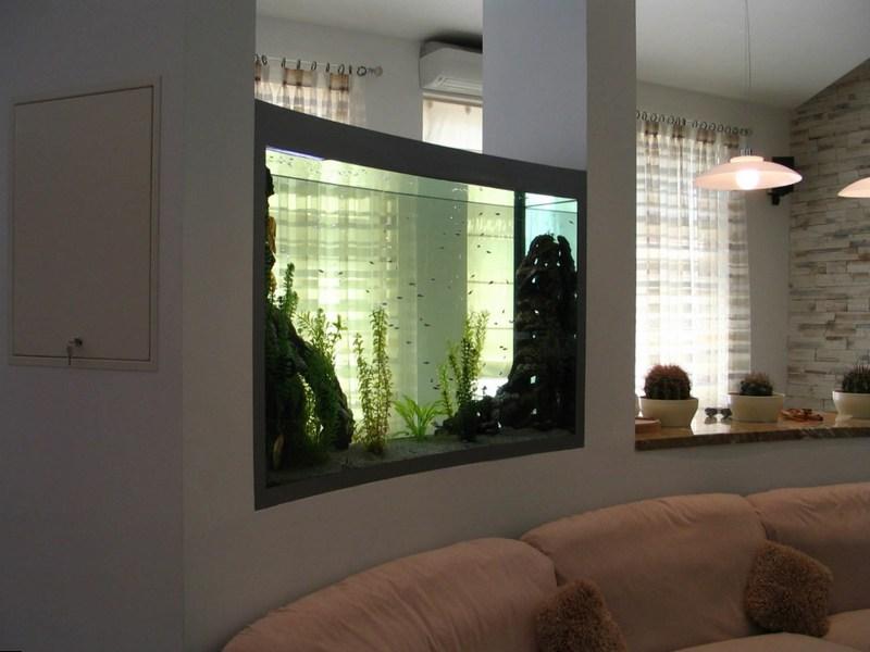 Встроенный в перегородку аквариум