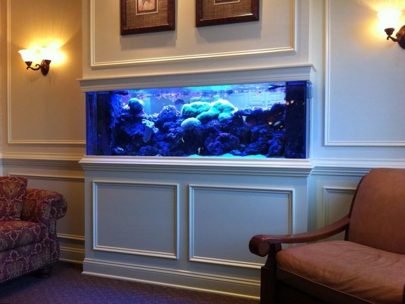 Встроенный в стену аквариум с красивой подсветкой
