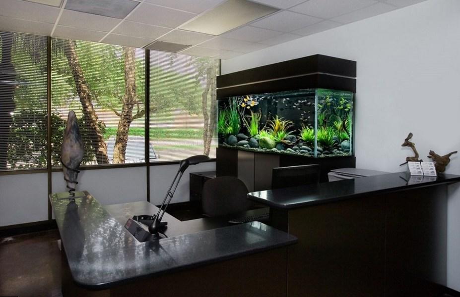 Рабочее место с большим аквариумом