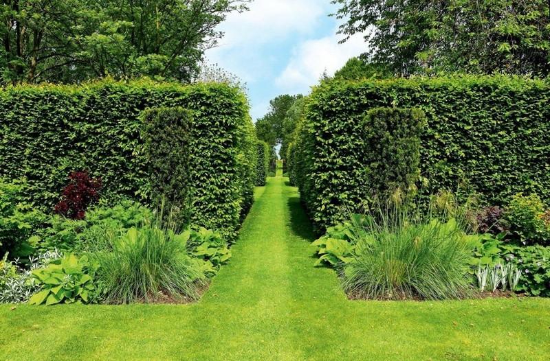 Красивая декоративная изгородь
