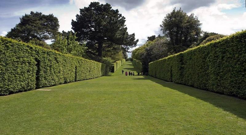 Идеально ровная изгородь гармонично вписывается в ландшафтном парке
