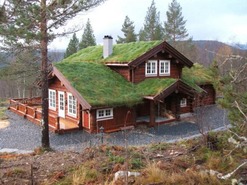 Деревянный дом с газоном на крыше