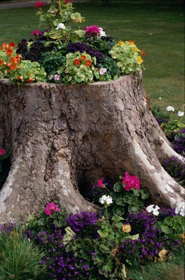 Оригинальное оформление спиленного дерева с помощью цветочной композиции